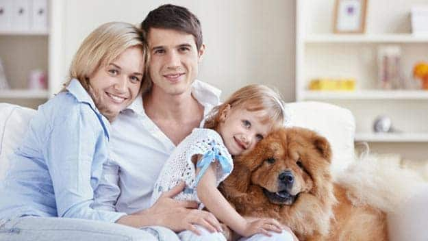 Wills & Trusts dog-young-family Direct Wills Little Bognor